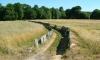 P0922 Steineinfassungen für Wege